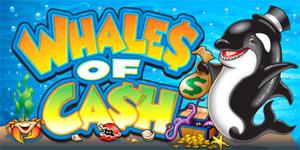 whalesOfCash