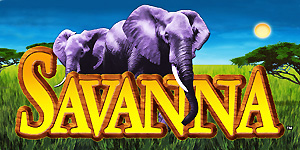 IGTsavanna